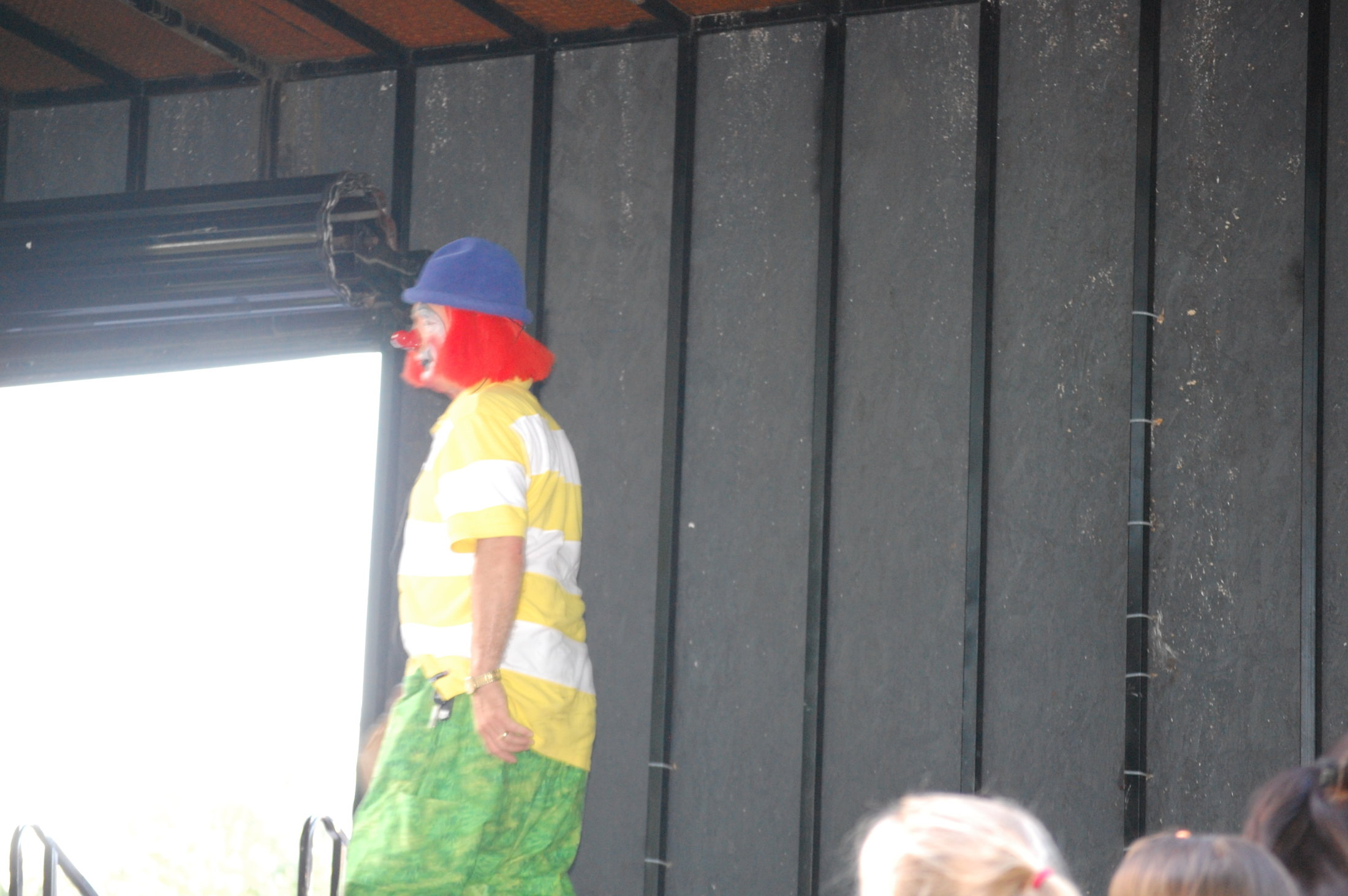 Clowns At The Carousel 2010 (081)