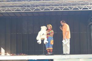 Carousel 2009 (163)