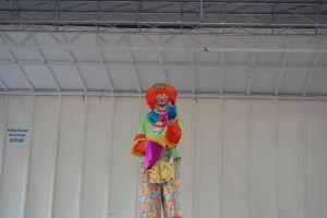 Carousel 2012 (311)